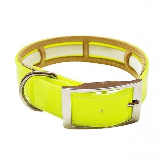 Collar para perro biothane 3,8 cm hebilla rulo verde grabado