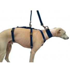 Arnes para perros galgo antiescape nylon azul