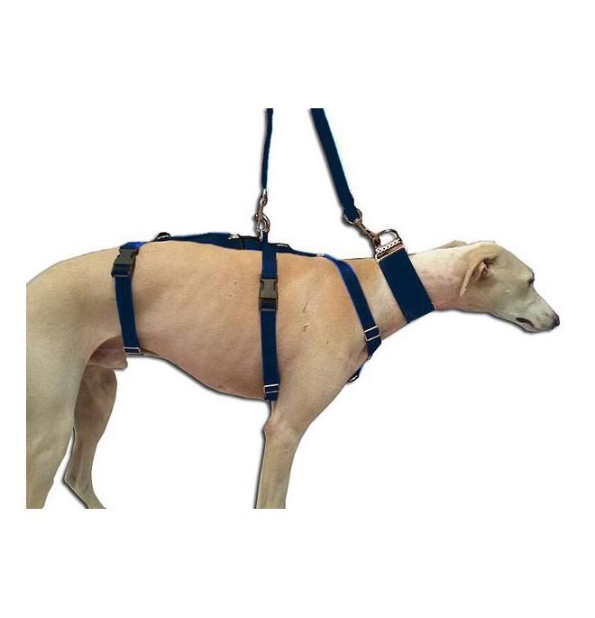 Arnes para perros galgo nylon Azul