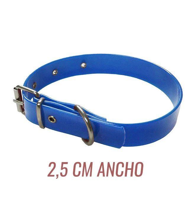 Collar para perro biothane 2,5 hebilla rulo azul