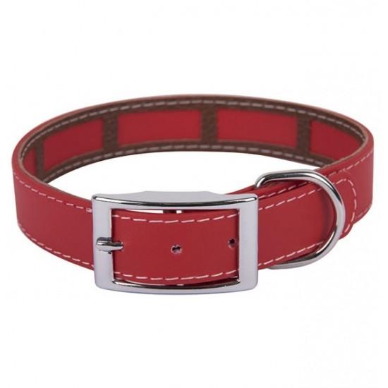 Collar para perro biothane 5 cm Hebilla Rulo Naranja