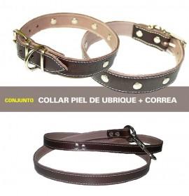 Conjunto para perros piel de ubrique marron