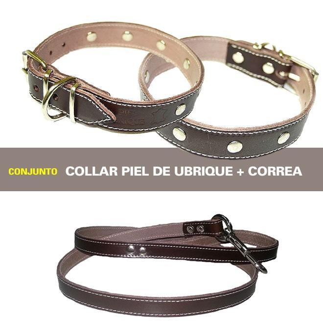 Conjunto para perros Piel Ubrique Marron