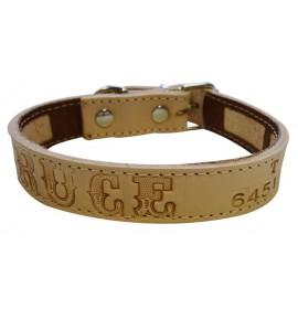 Collar antiparasitario para perro piel vaquetilla personalizado natural