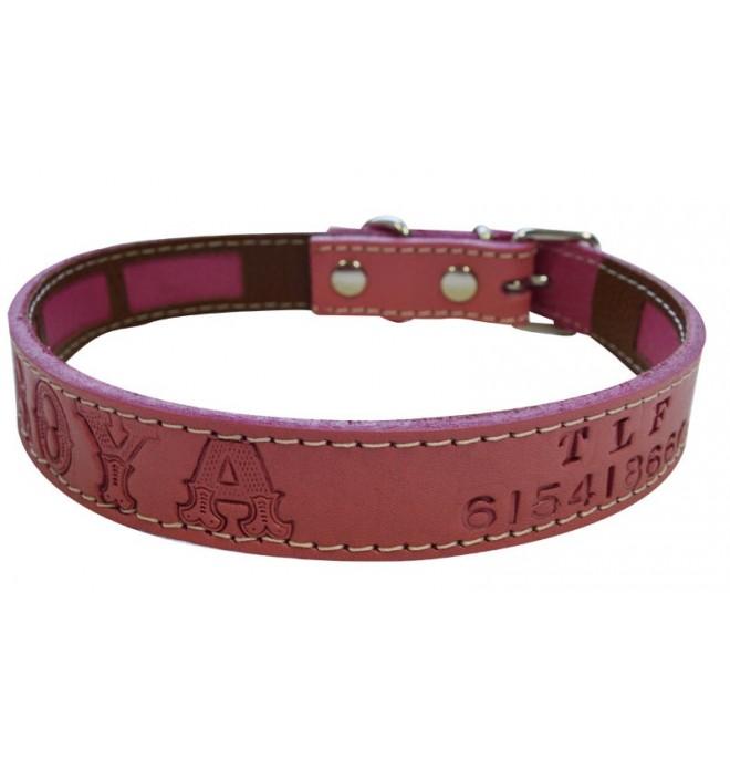 Collar antiparasitario para perro piel vaquetilla personalizado fucsia nombre