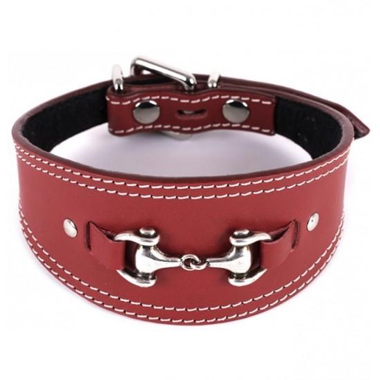 Collar y correa antiparasitario para perro piel vaquetilla personalizado fucsia nombre