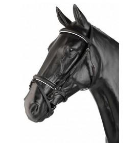 Cabezada para caballo Inglesa con dos Riendas (2R)