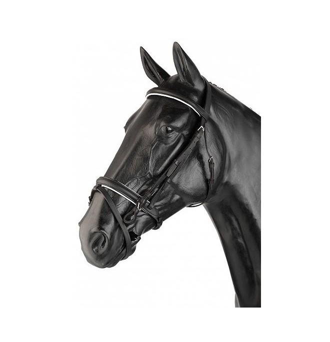 Cabezada para caballo Inglesa 2 Riendas (2R)