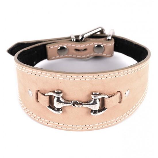 Collar para perro de rehala 5 cm ancho 1 hebilla 3 colores