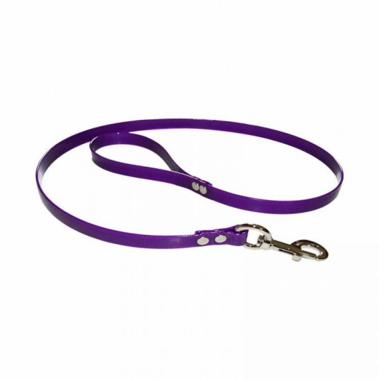 Collar para perro de rehala 5 cm ancho un color
