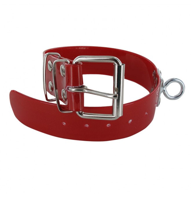 Collar para perro biothane 3,8 quitavueltas rojo