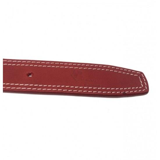 Collar Antiparasitario Biothane Amarillo