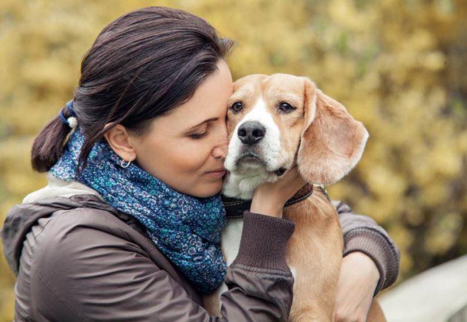 10 Cosas que tu perro odia que hagas y quizás no lo sepas