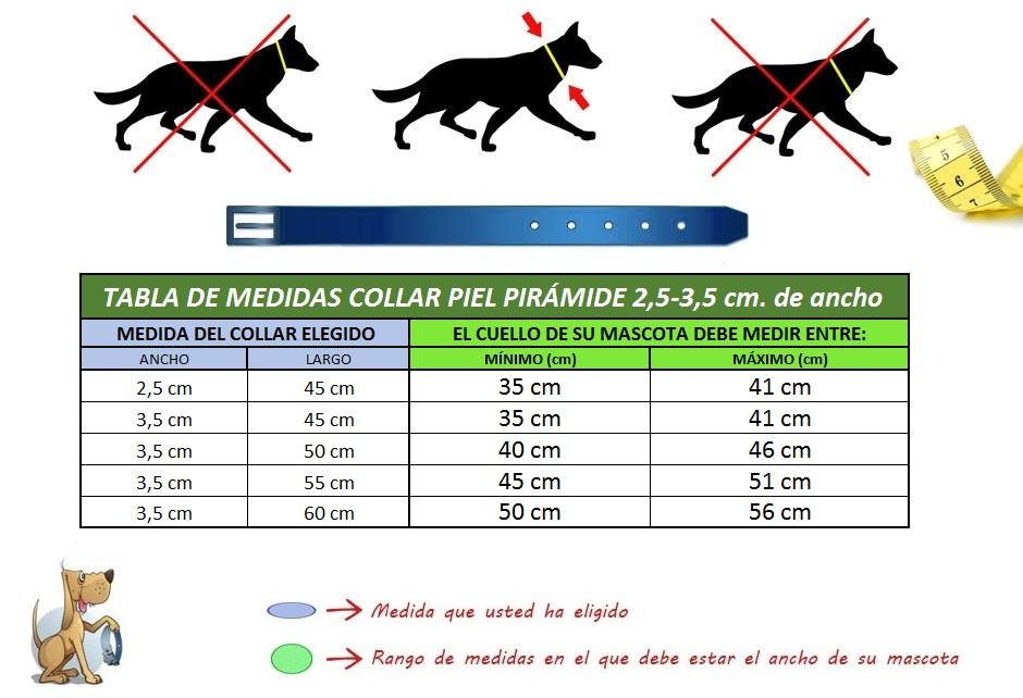 collar para perro piel piramide medidas