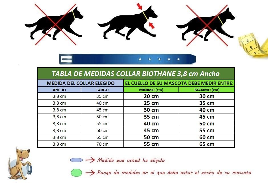 medida collar perro biothane tres con ocho
