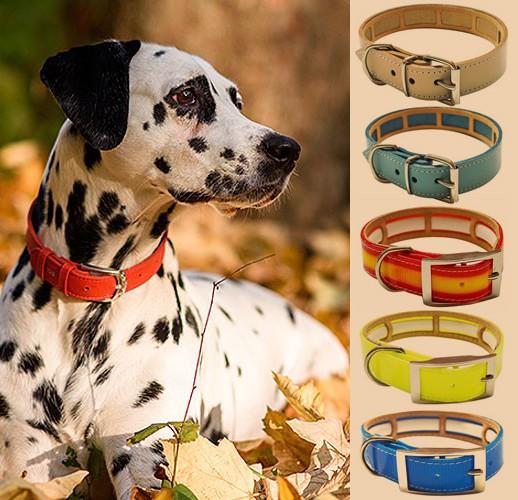 Collares para perros con Funda Antiparasitaria